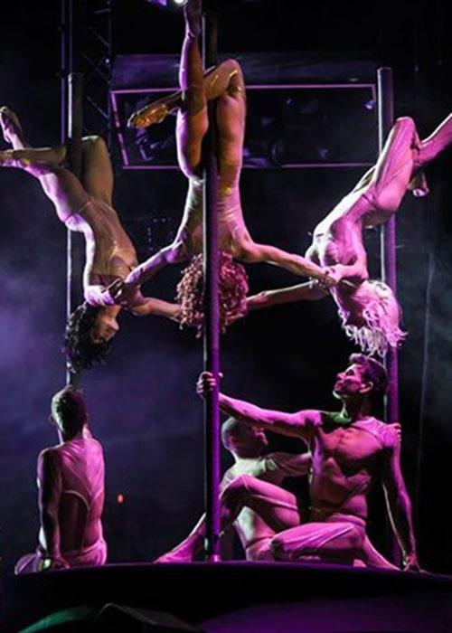 pole dance triple des farfadais